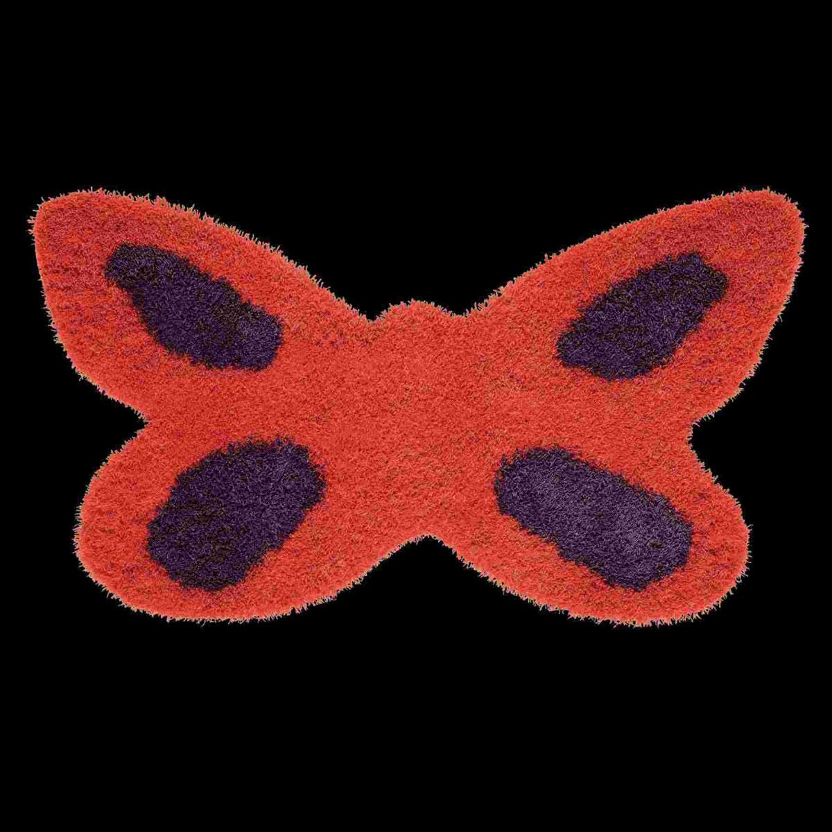 butterfly-daisy-orange